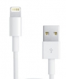 ������ ��� iPhone SE/5S/5 / 5C, iPad 4, iPad Air � iPad mini Dorten Lightning to USB Cable, ���� ����� (DN302001)